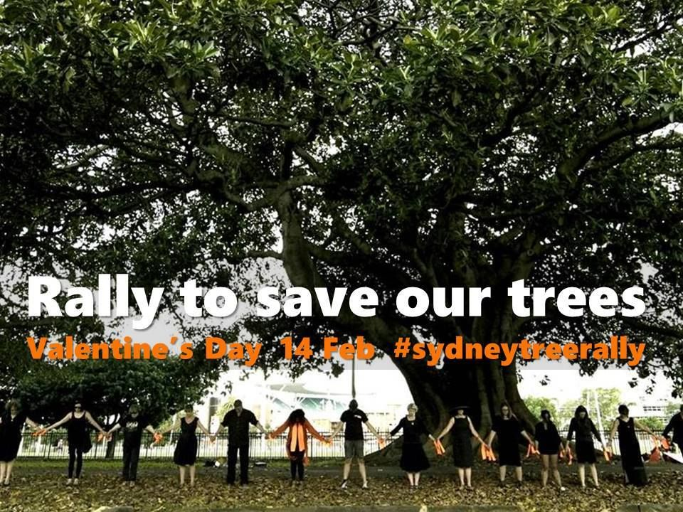 Rally to save our trees, Alison Rd, Anzac Pd, Sydney