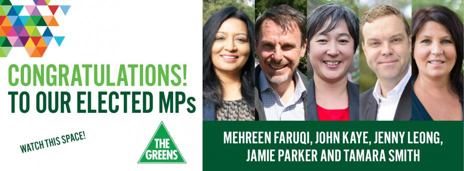 Thank you MP's